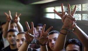 افزایش ۴۰۰ درصدی شکنجه اسرای فلسطینی