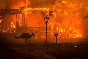 آتشسوزیهای استرالیا - نمایه