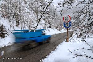 برف زمستانی در جنگل توسکستان