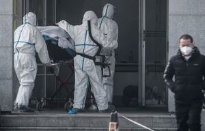 بیماری «کرونا ویروس» وارد ایران نشده است