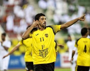 محسن صالح الغسانی