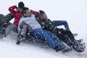 عکس/ تیوبسواری در برف