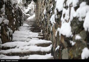 عکس/ روز برفی در پارک جمشیدیه