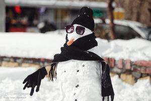 عکس/ مسابقه ساخت آدم برفی