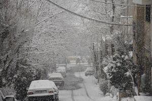 عکس/ بارش برف در لواسان