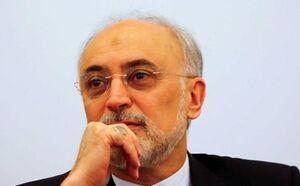 دیدار سفیر آلمان در تهران با رئیس سازمان انرژی اتمی