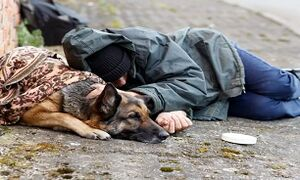 بیخانمان