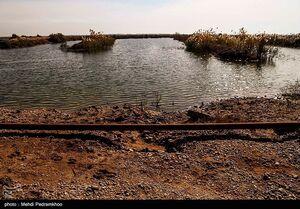 عکس/ آسیبهای محیط زیستی در نزدیکی میدان نفتی
