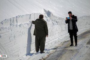 عکس/ بارش چند متری برف در گردنههای کردستان