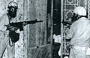 افشاگری درباره قتل عام سعودیها در مکه در سال ۱۹۷۹