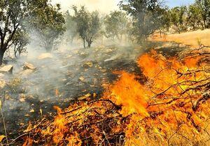 آتش سوزی گسترده در گیلان