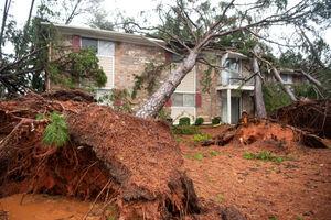 عکس/ طوفان مرگبار در آمریکا