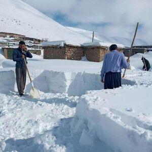 ارتفاع برف در پیرانشهر