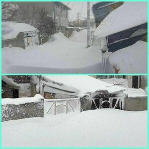 عکس/ خلخال اردبیل زیر کوهی از برف