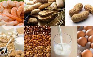 رژیم غذایی نمایه