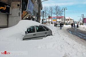 عکس/ بارش سنگین برف لاهیجان