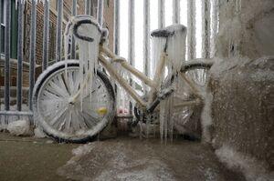 عکس/ دوچرخه یخ زده