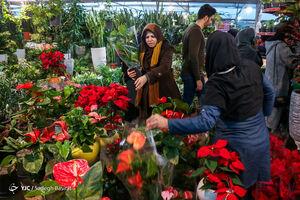 عکس/ گرمی بازار گل در روز مادر