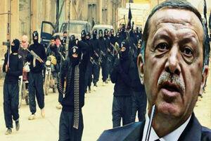 راز تحرکات تروریستهای تحتالحمایه ترکیه در «ادلب»