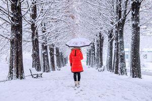 آخر هفته در کدام استانهای کشور برف میبارد؟