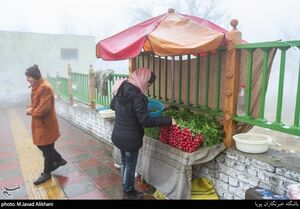عکس/ محله مینی سیتی تهران