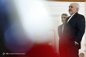 دیدار وزیر امور خارجه دولت پادشاهی هلند با ظریف