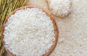برنج نمایه