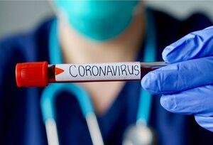 کلیه، کبد و قلب در معرض خطر ویروس کرونا
