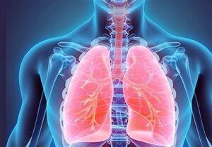 ۶ راهکار ساده برای تقویت ریهها و دستگاه تنفسی