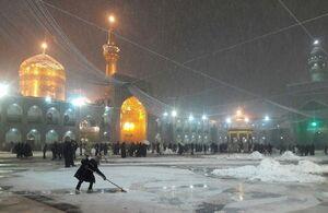 عکس/  از ساعتی قبل بارش برف در مشهد مقدس آغاز شده است
