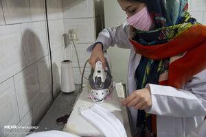 عکس/ تولید ماسک در کارگاه مردمی