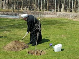 عکس/ کاشت نهال سیب توسط روحانی