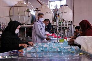 عکس/ تلاش شبانهروزی برای تولید مواد ضدعفونی
