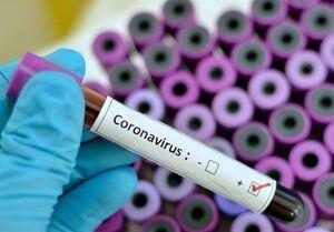 ۲۰ واکسن برای کرونا در حال بررسی است