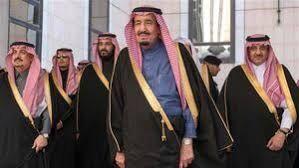 چرا محمد بن سلمان دو شاهزاده سعودی را بازداشت کرد؟