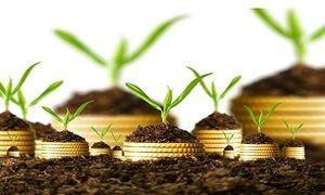 آیا بیمه کشاورزی اجباری میشود؟