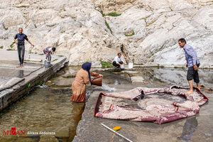 قالی شویی در چشمه علی