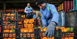 جدیدترین قیمت میوه در آستانه عید/ شایعه قرنطینه تهران، قیمتها را بالا میبرد؟