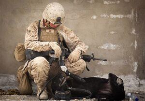 افزایش شمار مبتلایان به کرونا در نیروهای نظامی آمریکا به ۶۷ نفر