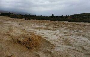 وضعیت بحرانی ۸۰ روستا در ریگان کرمان/ جان باختن ۵ نفر در استان فارس +عکس و فیلم