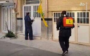 فیلم/ ضدعفونی خیابانهای قم توسط نیروهای حزبالله