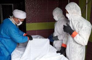 جهاد روحانیون دیار پانزده خرداد در دفن بیماران کرونایی +عکس