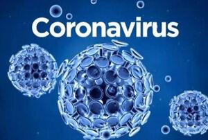 تصویر سه بعدی از ویروس کرونا