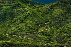 فیلم/ سفر به ارتفاعات جنگلهای ارسباران