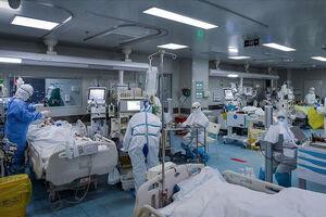 ماجرای زوج پزشکی که شب عروسی را در بیمارستان گذراندند +عکس