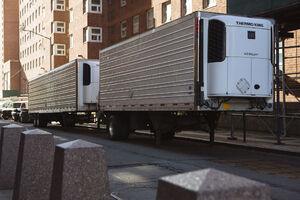 اولین تصاویر از کامیونهای حمل جنازه در آمریکا