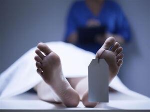 جسد سردخانه نمایه
