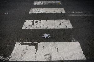 عکس/ رد پای کرونا
