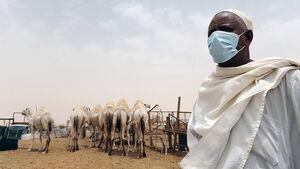 بیماریهای همهگیری که دامن بشر مدرن را گرفته است +عکس
