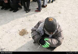 توضیح دادستانی تهران درباره علت رها شدن معتادان متجاهر